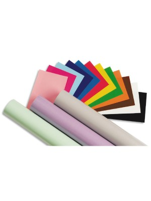 Rollo papel charol trepado Sadipal 25h 50 x 65 cm. color verde fuerte